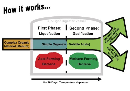 biogas-anaerobic digestion-how-it-works-production-of-methane-ch4-fermentation-process-digest