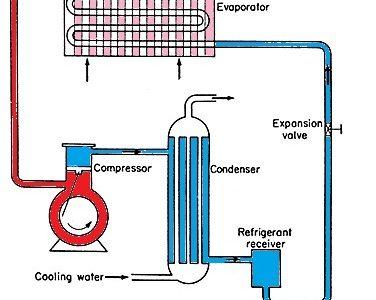 325bb 01 domestic refrigerator components of a domestic refrigerator Thermal Thermal domestic refrigerator