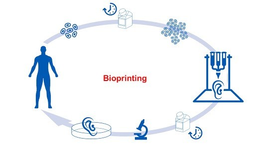3D-bioprinting-How-does-3D-Bioprinting-Work