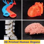 3D Printing Human Organs | 3D Printed Bone Tissue | New 3D Printing Skin Tissue | Revolutionary 3D Printed Ear