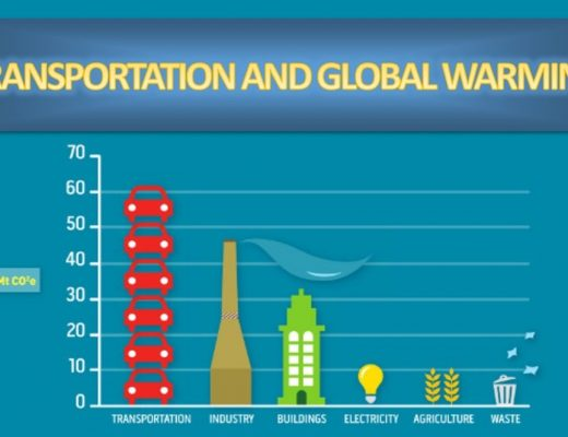 transportation-and-climate-change-Carbon-Emissions-by-Transport-Type