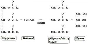 transesterification-process